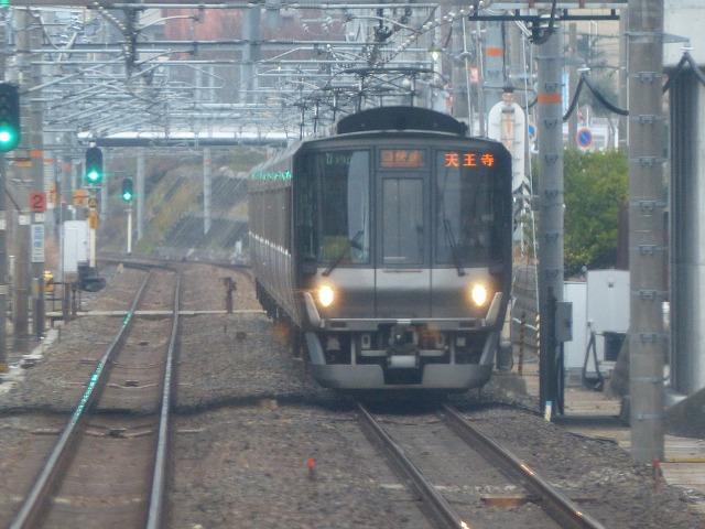 P1020012.jpg