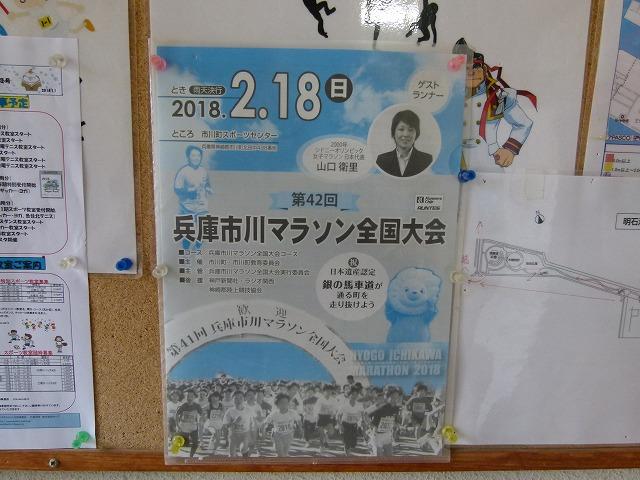 P1280459.jpg