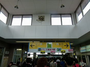 P1230753.jpg